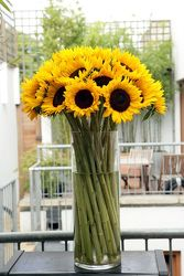 Sunflowers Grande from your Sebring, Florida florist