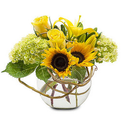 Sunshine Days from your Sebring, Florida florist