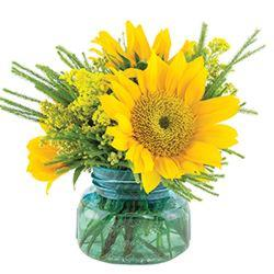 Sunflower Posy from your Sebring, Florida florist