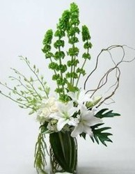 Serene in White from your Sebring, Florida florist