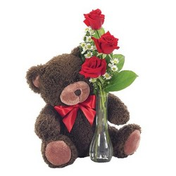 Teddy Bear and Roses from your Sebring, Florida florist