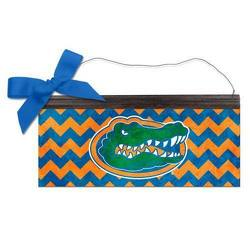 University of Florida Spirit Sign from your Sebring, Florida florist