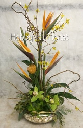 Tropical Dazzle from your Sebring, Florida florist