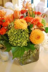 Organically grown from your Sebring, Florida florist