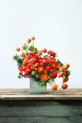 Over the top for Orange from your Sebring, Florida florist