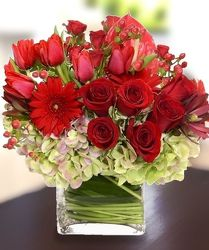 Sumptuous from your Sebring, Florida florist