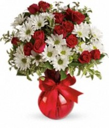 Red White and You from your Sebring, Florida florist