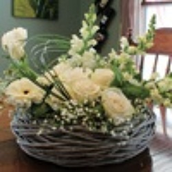 White Simplicity from your Sebring, Florida florist