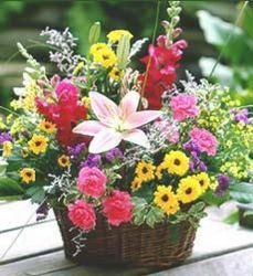 Wildflower Basket from your Sebring, Florida florist